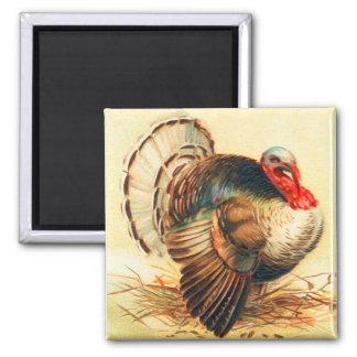 Vintage Thanksgiving Turkey Dinner Gobbler 2 Inch Square Magnet