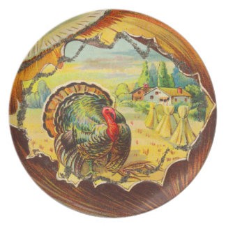 Vintage Thanksgiving Turkey Plate