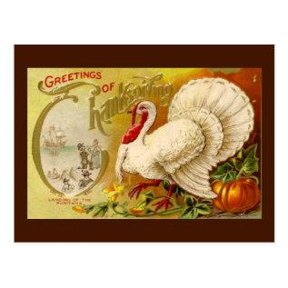 Vintage Thanksgiving Turkey Postcard at Zazzle