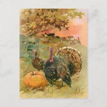 Vintage Thanksgiving Turkeys and Pumpkin Holiday Postcard