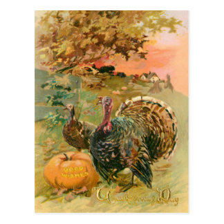 Vintage Thanksgiving Turkeys and Pumpkin Postcard