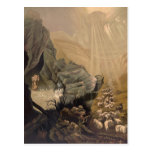 Vintage The Lost Sheep Bible Illustration 1878 Post Card