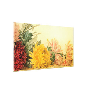 Vintage 'The Study of Chrysanthemums' Canvas Print