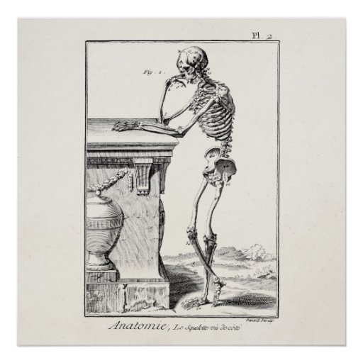 Vintage Thinking Human Skeleton Medical Anatomy Poster