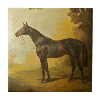Vintage Thoroughbred Horse Ceramic Tile