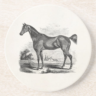Vintage Thoroughbred Horse Equestrian Personalized Drink Coaster