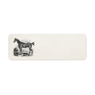 Vintage Thoroughbred Horse Equestrian Personalized Label