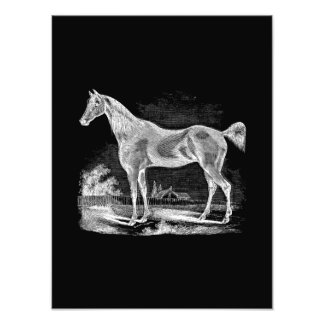 Vintage Thoroughbred Horse Equestrian Personalized Photo Art