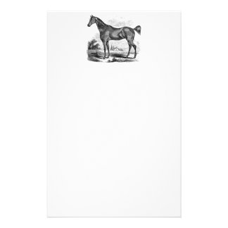 Vintage Thoroughbred Horse Equestrian Personalized Stationery