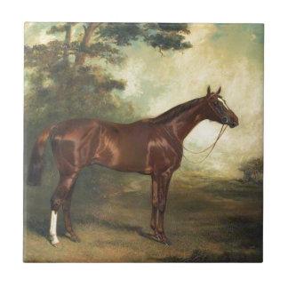 Vintage Thoroughbred Horse Tile