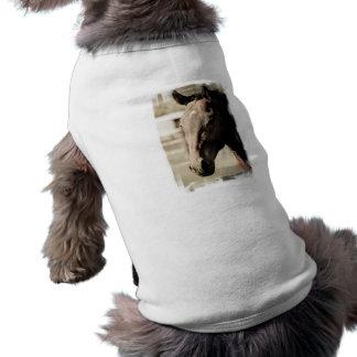 Vintage Thoroughbred Pet Shirt