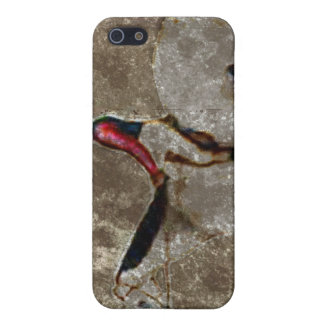 Vintage Thoroughbred Race Horse iPhone 5 Case