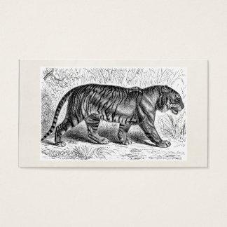 Vintage Tiger Illustration Wild Tigers Template Business Card