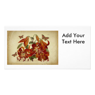 Vintage Tiger Lilies and Butterflies Custom Photo Card