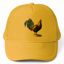 Vintage to rooster trucker hat