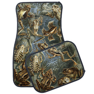 Vintage Toads and Frogs Batrachia by Ernst Haeckel Car Mat