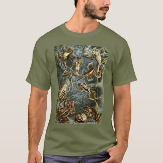 Vintage Toads and Frogs Batrachia by Ernst Haeckel T-Shirt
