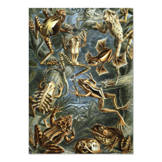 Vintage Toads and Frogs, Ernst Haeckel Invitations