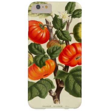Vintage Tomato Botanical Print iPhone 7 Cases