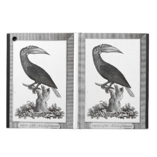 Vintage toucan bird etching case