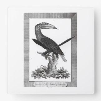 Vintage toucan bird etching clock