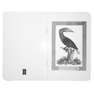 Vintage toucan bird etching journal