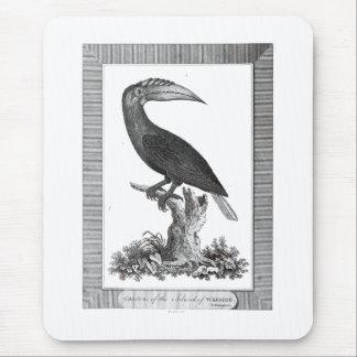 Vintage toucan bird etching mousepad