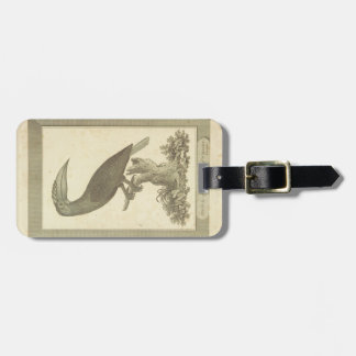 Vintage toucan bird etching tag travel bag tags