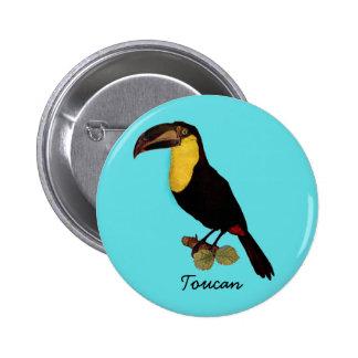 VINTAGE TOUCAN BIRD. YELLOW-THROATED TOUCAN PIN