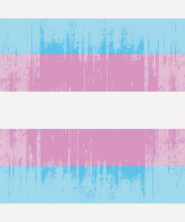 Vintage Transexual Pride T Shirt