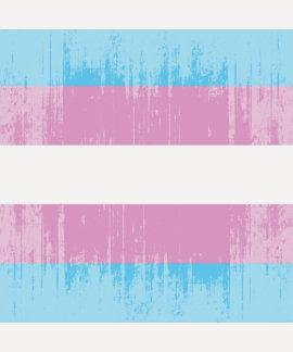 Vintage Transexual Pride T-shirts