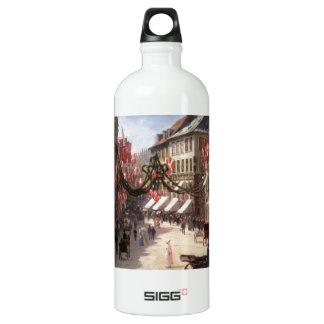 Vintage Travel Flag Day Denmark Water Bottle