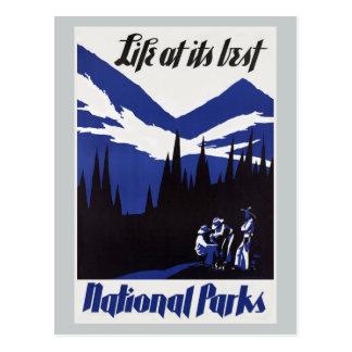 Vintage Travel National Park Postcard