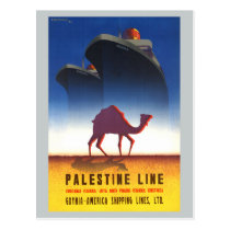 Vintage Travel Palestine Line Ship Postcard