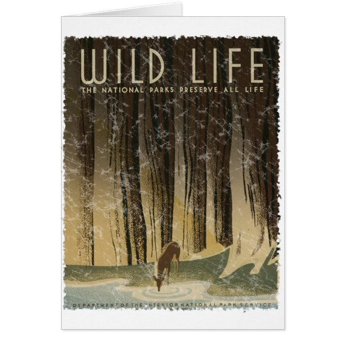 Vintage Travel Poster - Wildlife circa 1934 Card
