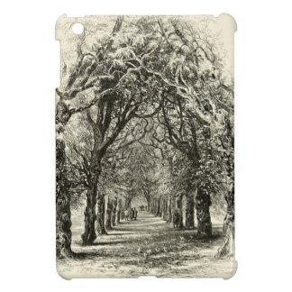 Vintage Tree-Lined Avenue Nature Walk 1800s iPad Mini Cases