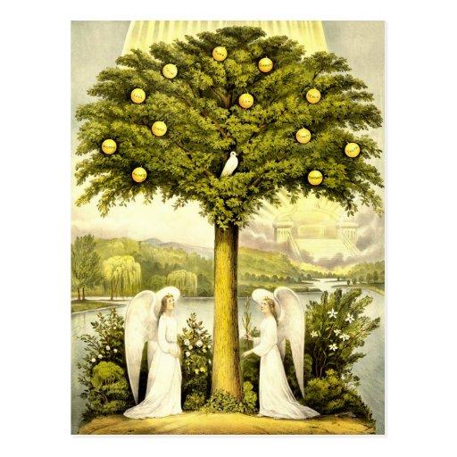 Vintage Tree of Life Christian Illustration 1892 Postcard