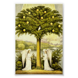 Vintage Tree of Life Christian Illustration 1892 Poster