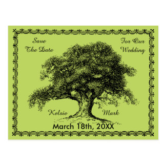 Vintage Tree Outdoor Rustic Save The Date Postcard