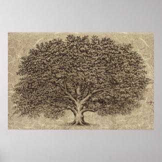 Vintage Tree Print