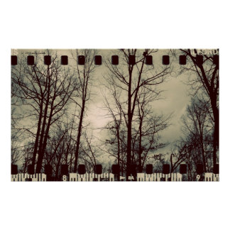 Vintage Trees poster
