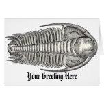 Vintage Trilobite Greeting Card
