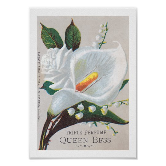 Vintage Tripe Perfume Queen Bess Poster