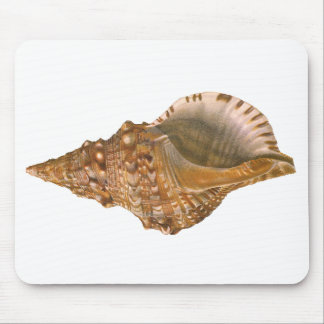 Vintage Triton Seashell Shell, Marine Ocean Animal Mouse Pad