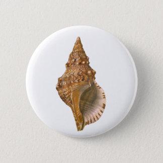 Vintage Triton Seashell Shell, Marine Ocean Animal Pinback Button