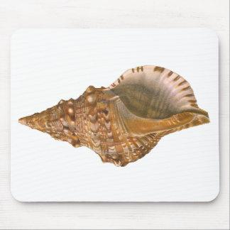 Vintage Triton Shell Seashell, Marine Ocean Animal Mouse Pad