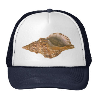 Vintage Triton Shell Seashell, Marine Ocean Animal Trucker Hat
