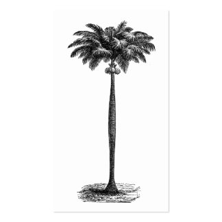 Vintage Tropical Island Palm TreeTemplate Blank Business Card Templates