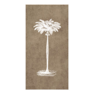 Vintage Tropical Island Palm Tree Template Blank Card