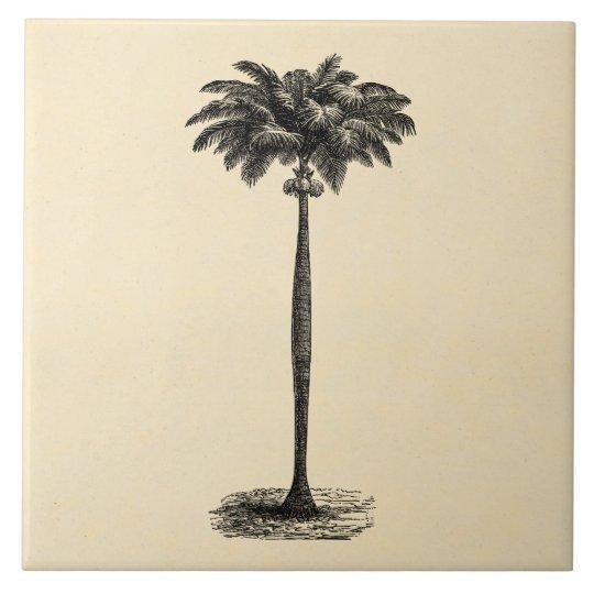 Vintage Tropical Island Palm Tree Template Blank Tile Zazzle Com